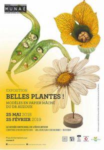 Exposition : Belles plantes ! Modèles en papier mâché du Dr. Auzoux