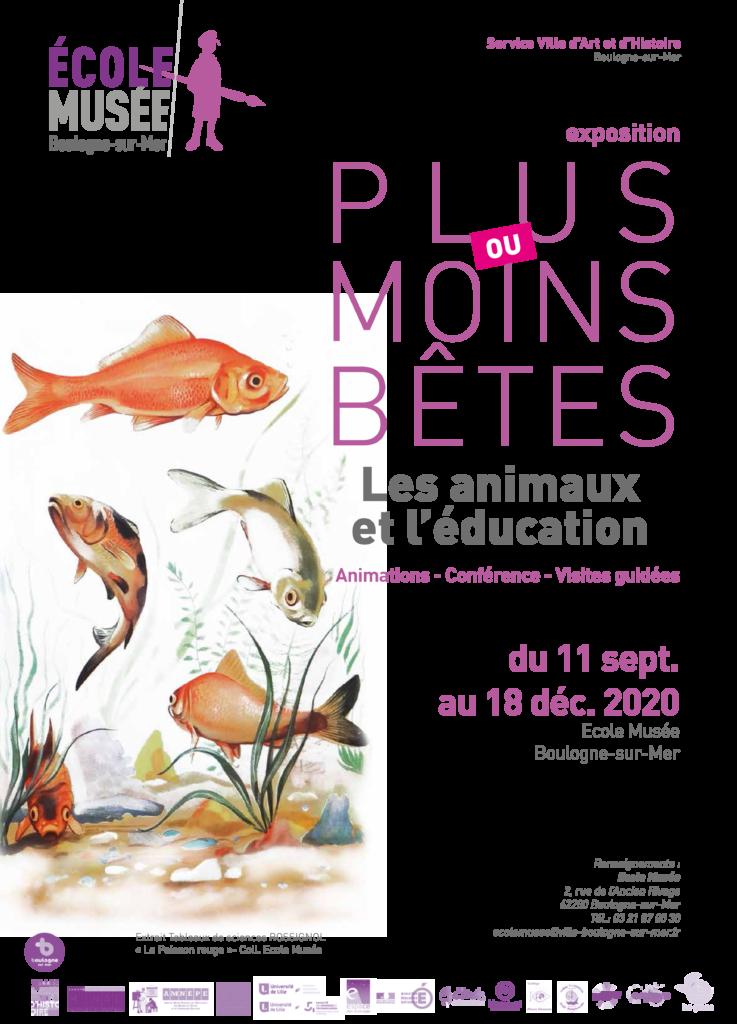 Read more about the article Plus ou moins bêtes : les animaux et l'éducation